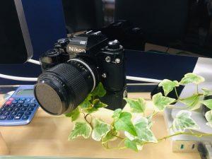 部長のデスク、カメラ、アイビー。